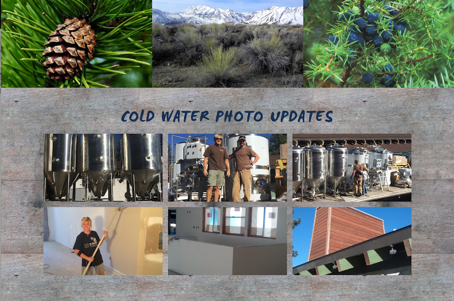tahoe-website-design-cold-water-brewery-5